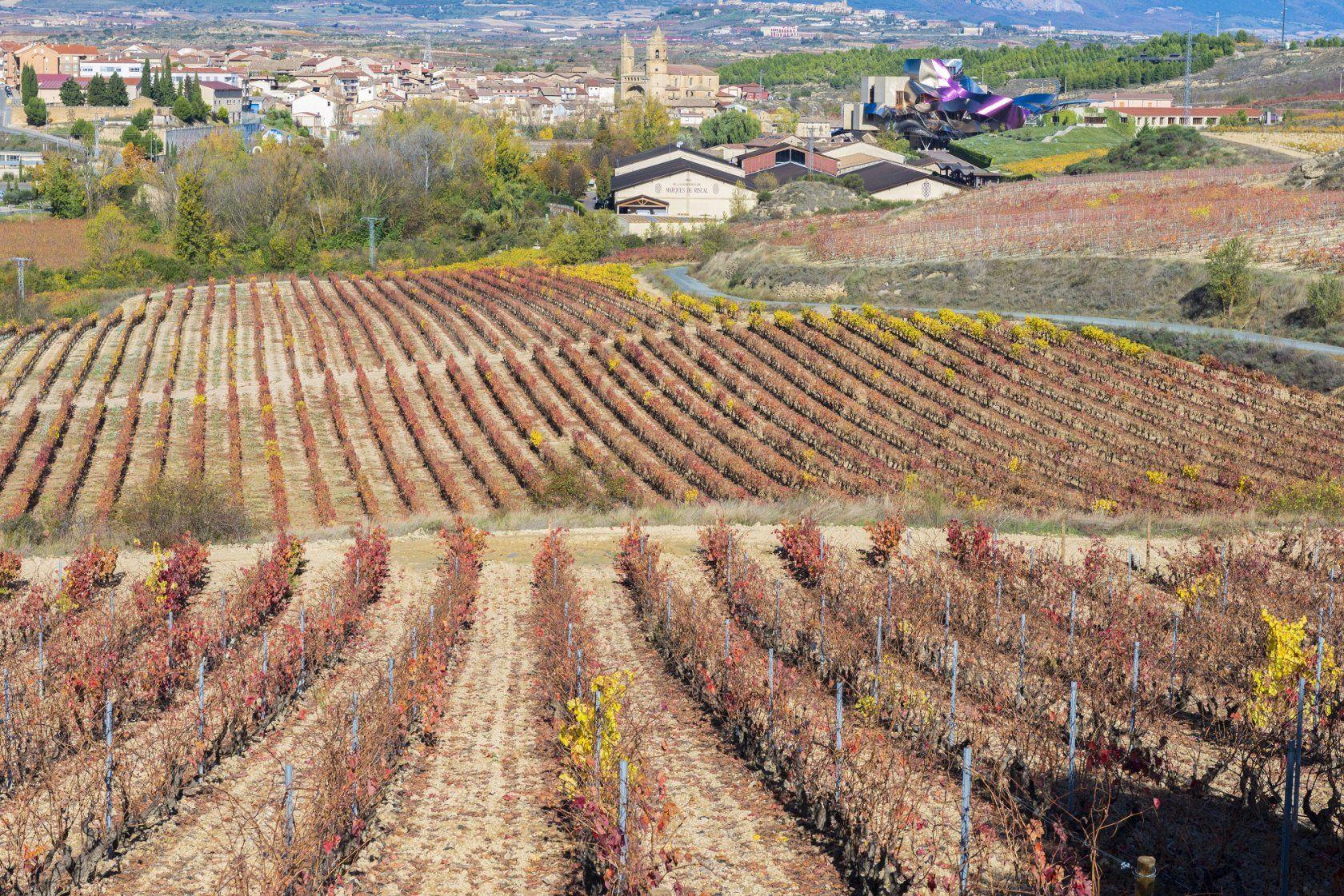 bodegas marques de riscal Bodegas Marques de Riscal – вино как произведение искусства tild3162 6266 4830 b466 663637616633  shutterstock 337672835