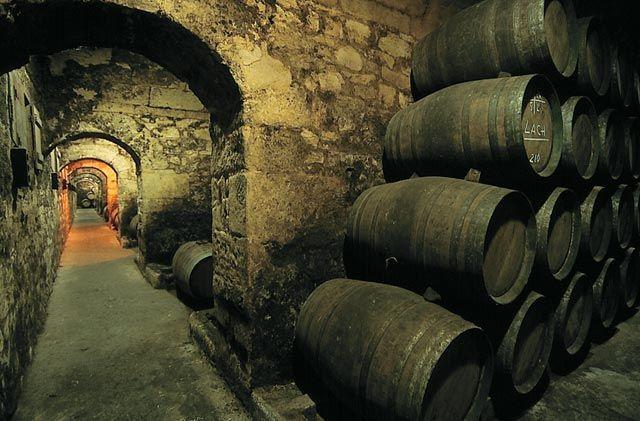 bodegas marques de riscal Bodegas Marques de Riscal – вино как произведение искусства tild3230 3337 4264 b535 623734653261  marquesriscal calado2