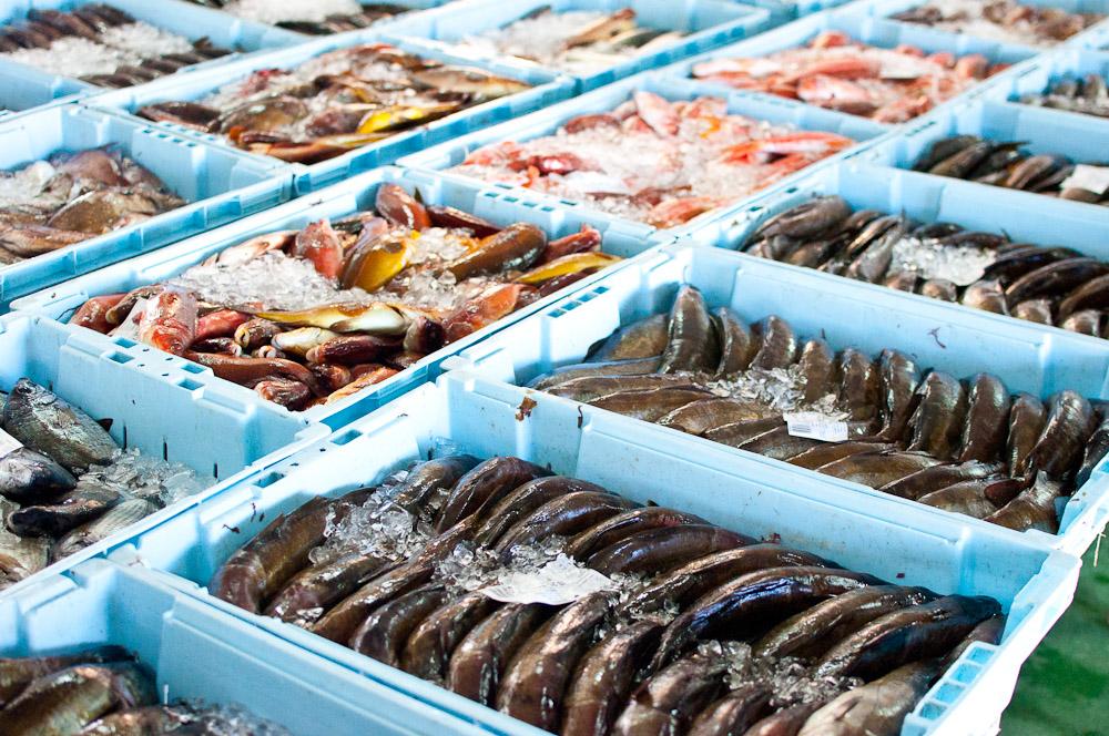 Рынки Испании Рынки Испании: рыбные, «блошиные» и «средневековые» – подробный обзор ccccc