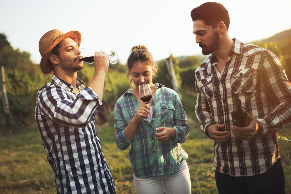 винный туризм Осень в Испании: места для винного туризма 10