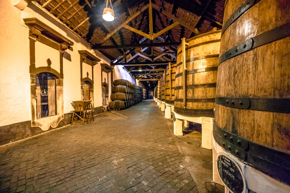 винный туризм Осень в Испании: места для винного туризма 12