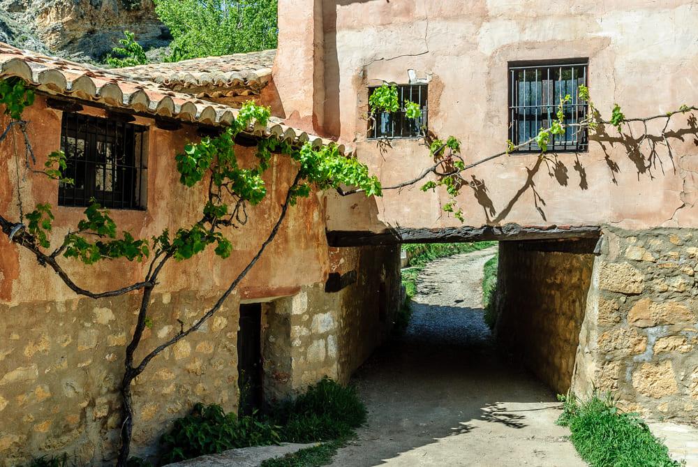 винный туризм Осень в Испании: места для винного туризма 13