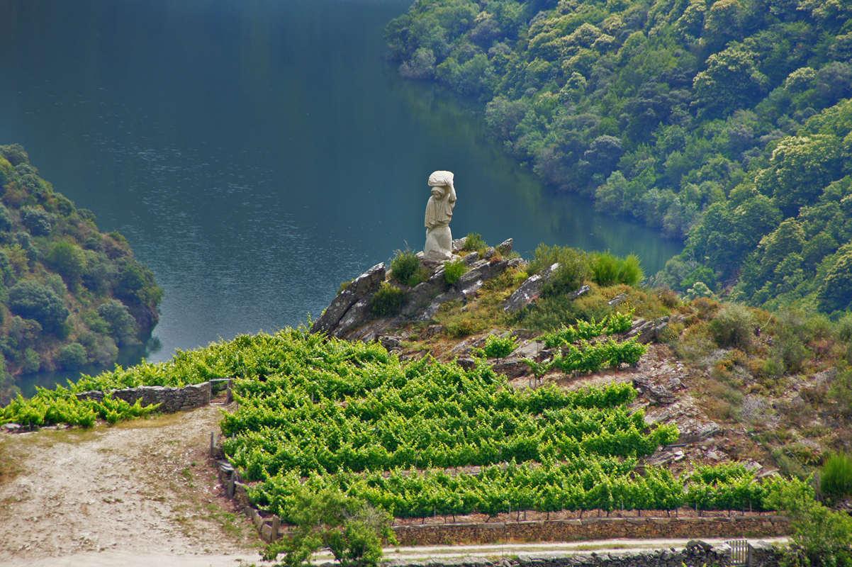 винный туризм Осень в Испании: места для винного туризма 5