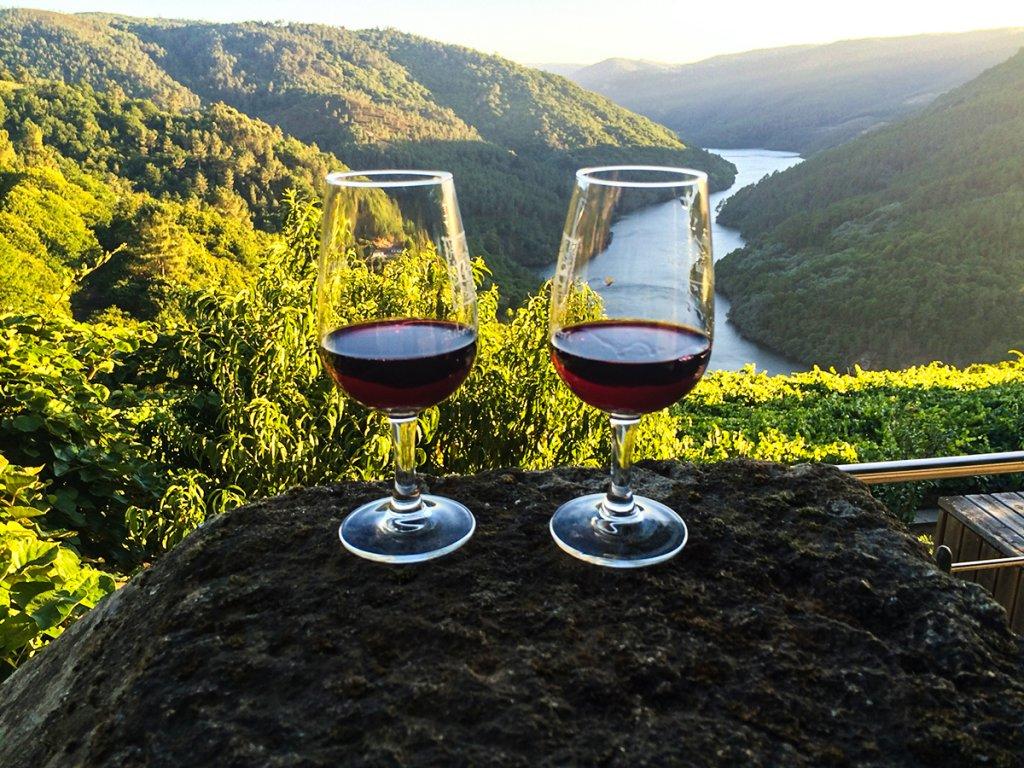 винный туризм Осень в Испании: места для винного туризма 6