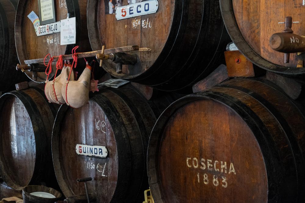винный туризм Осень в Испании: места для винного туризма 9